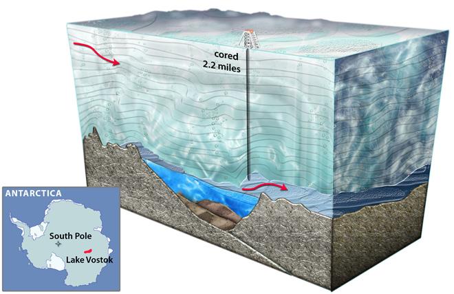 antarctic-drill-creature.jpg